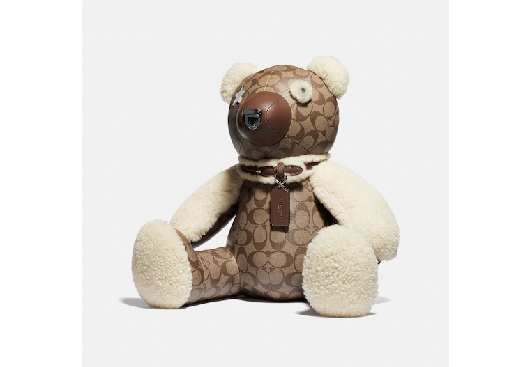 Bear In Signature Canvas image number 0