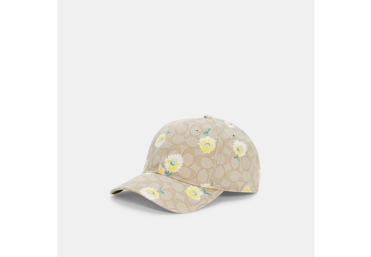 Hat In Signature Daisy Print image number 0