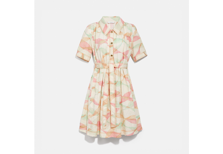 Pleated Trench Dress image number 0