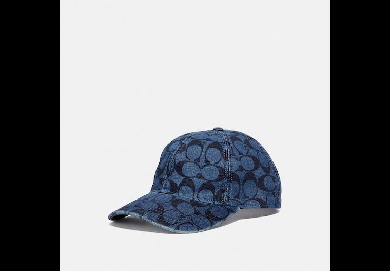 Signature Hat image number 0